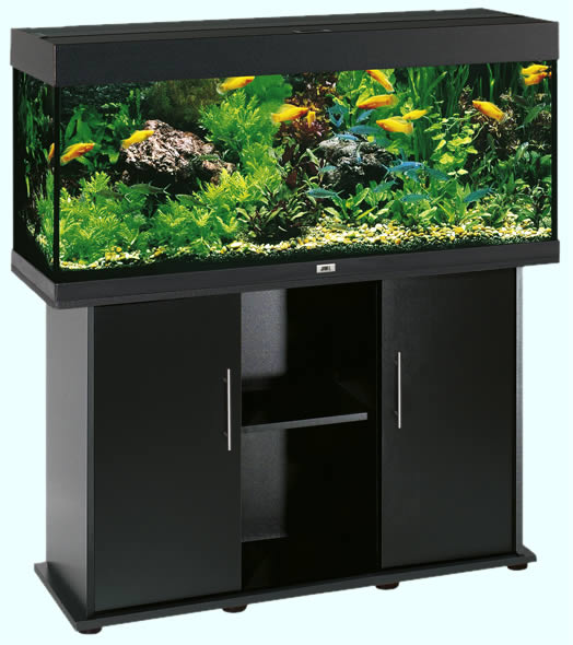 bbcdcb6aa01b41 Bg-Pet.com - Aquariums RIO 240 Black - Juwel Aquariums